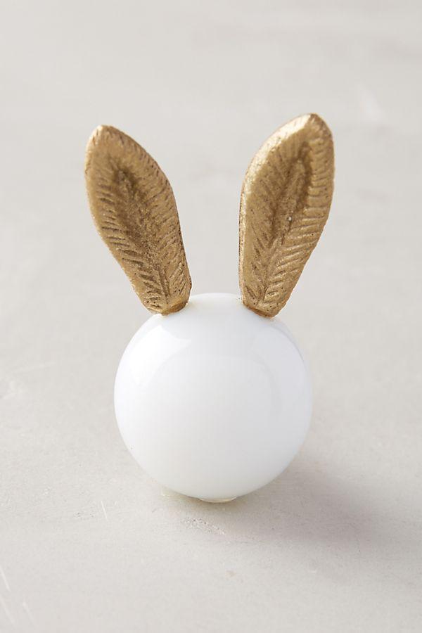 bunny.jpeg