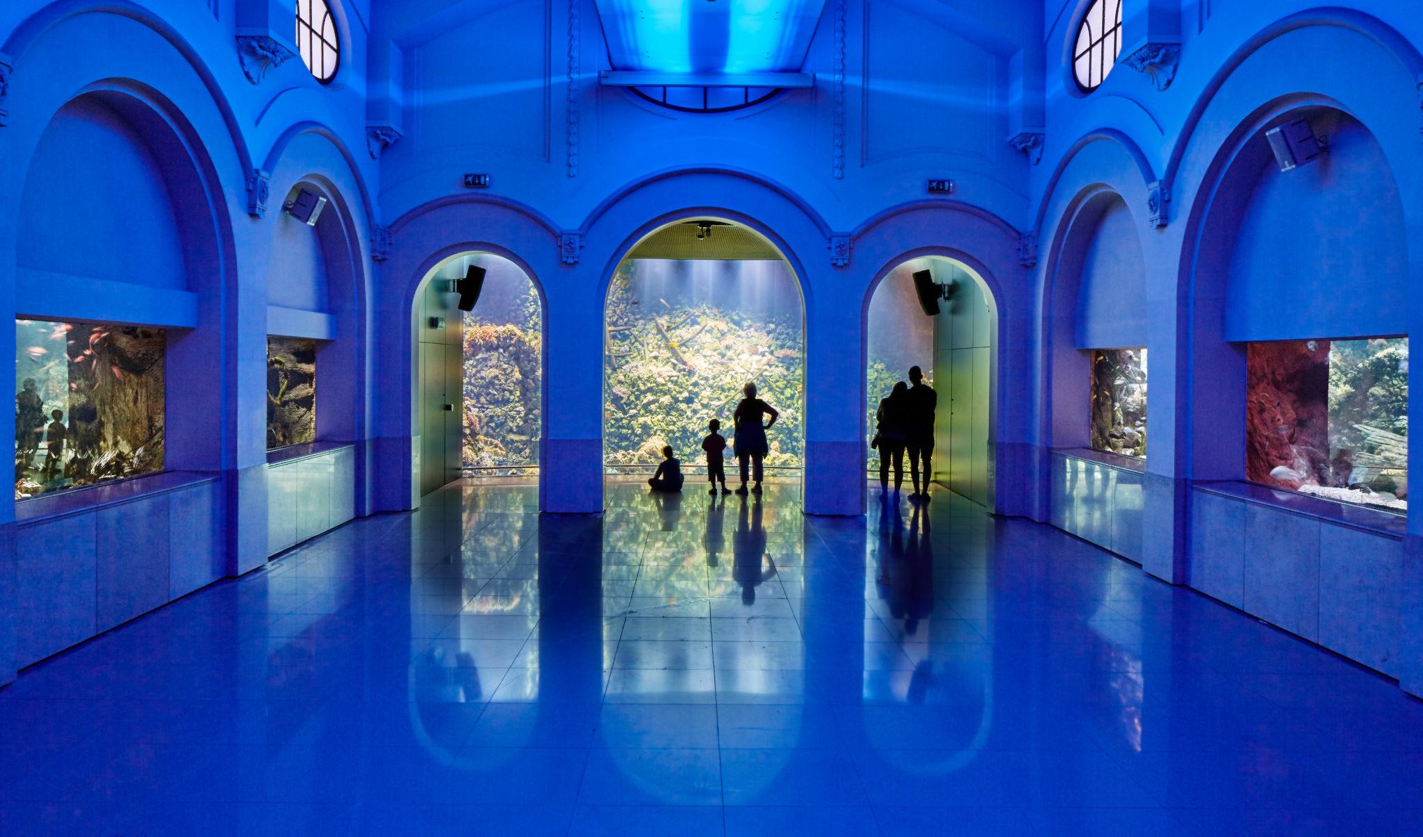 Antwerpen | Zoo Rif Aquarium