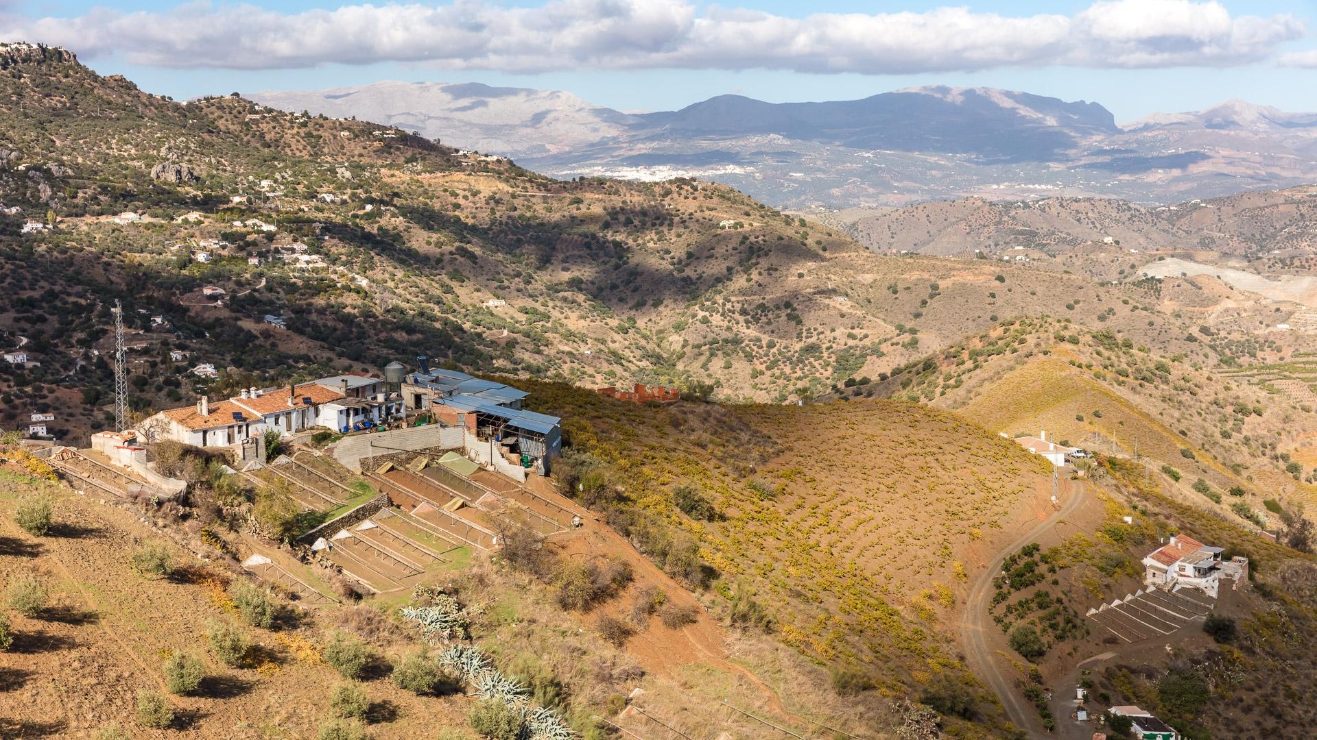 Landschap El Borge