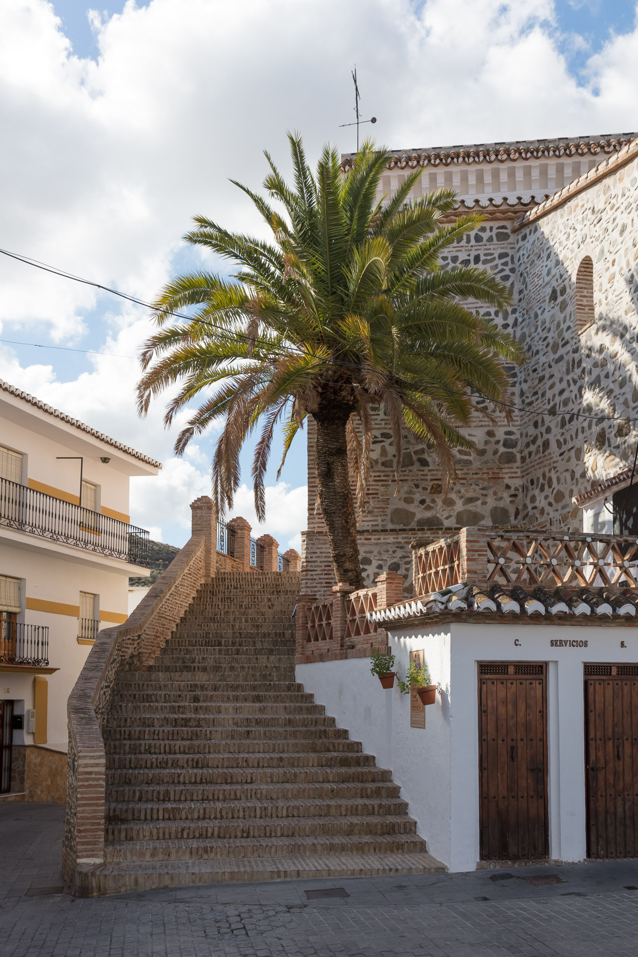 Palmboom aan de kerk van El Borge