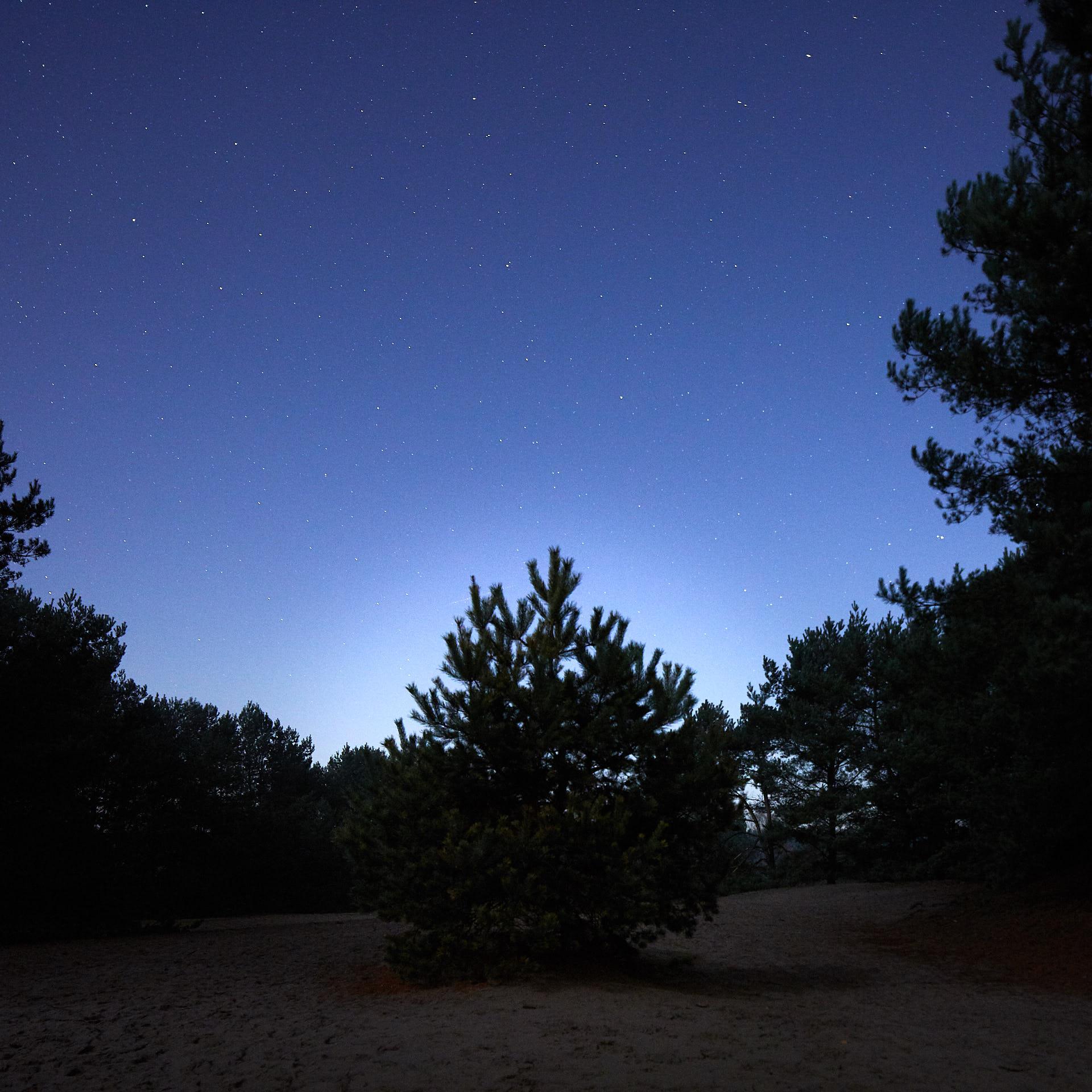 Lommel_Sahara-5772.jpg