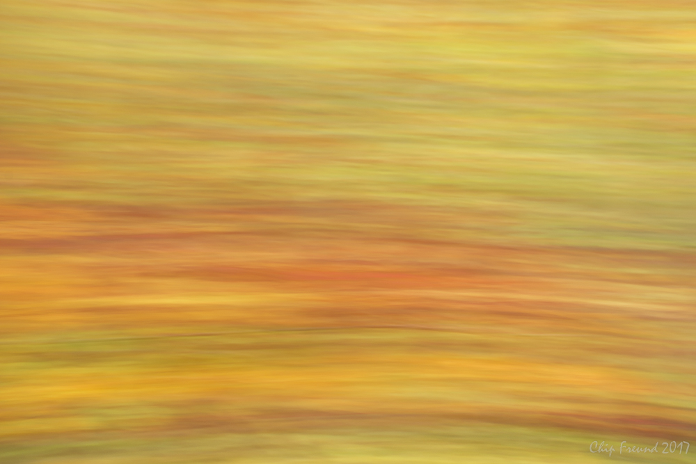 Impressions of Fall Colors -  Buy a Print