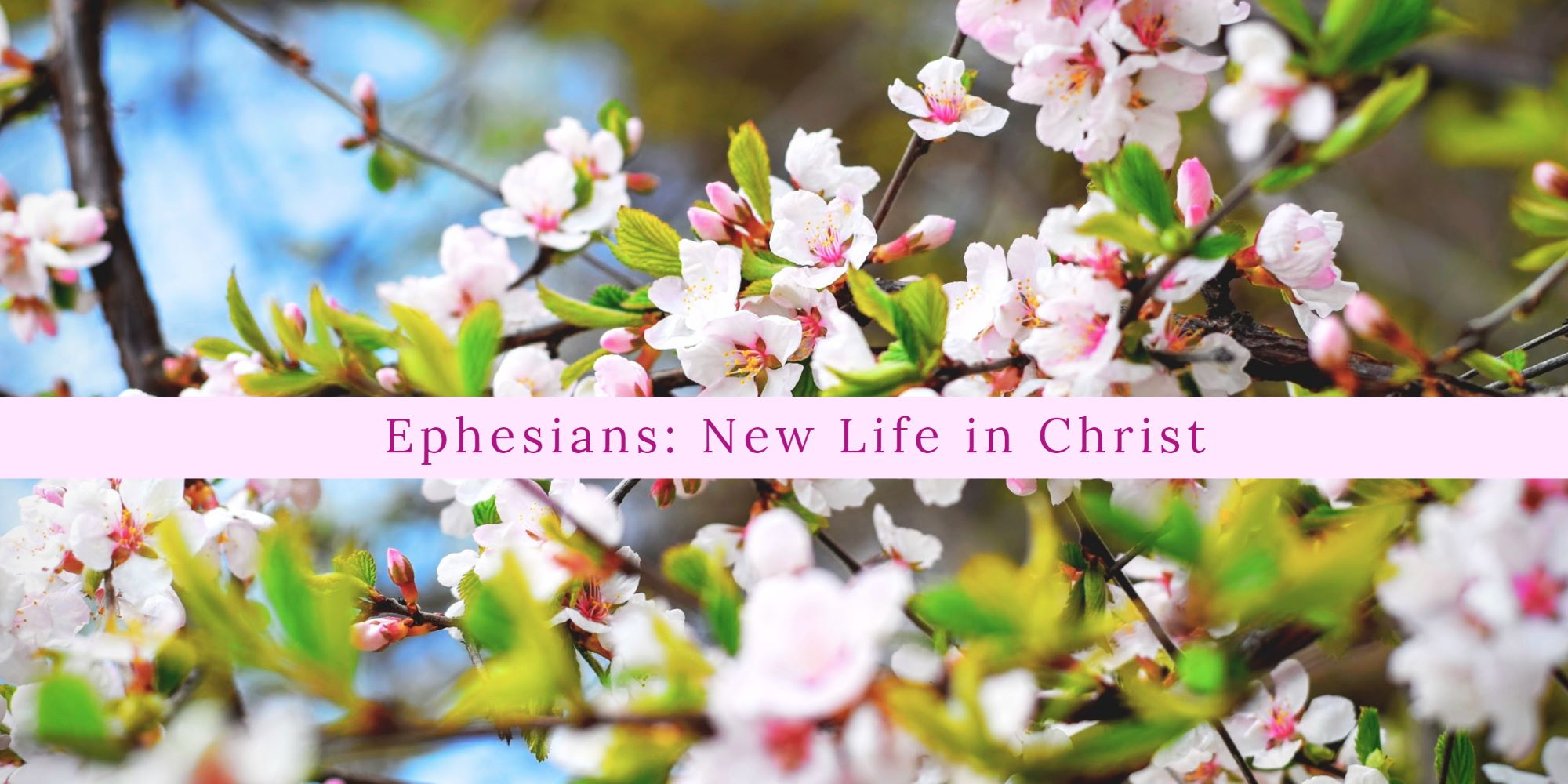 Ephesians.update (1).jpg