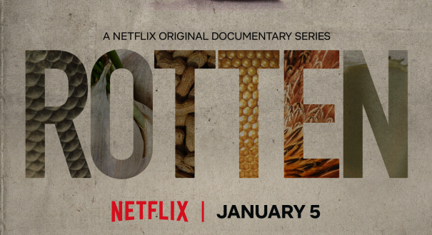 Rotten , a six-part Netflix documentary series explores problems with our food system and gives voice to a dwindling population of bees, but does it have answers?