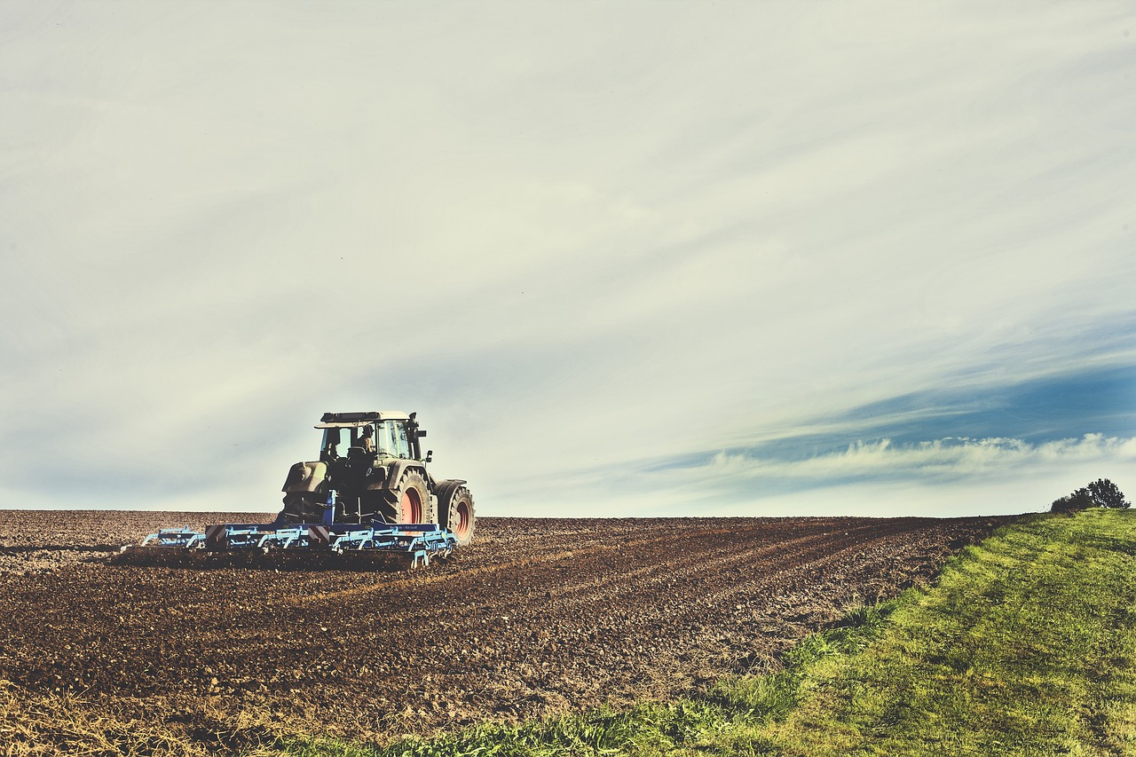 Tillage mechanically agitates the soil, destroying its all-important ecosystem and releasing carbon into the air.
