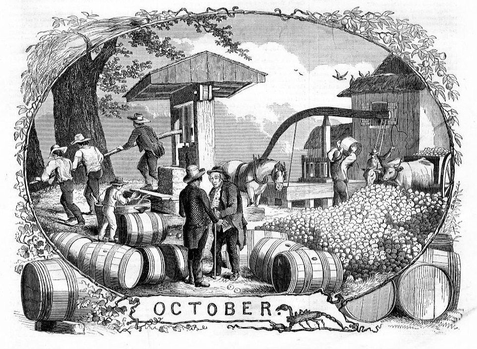 After losing his first election, in 1758 George Washington reportedly plied voters with 144 gallons of cider, and won.