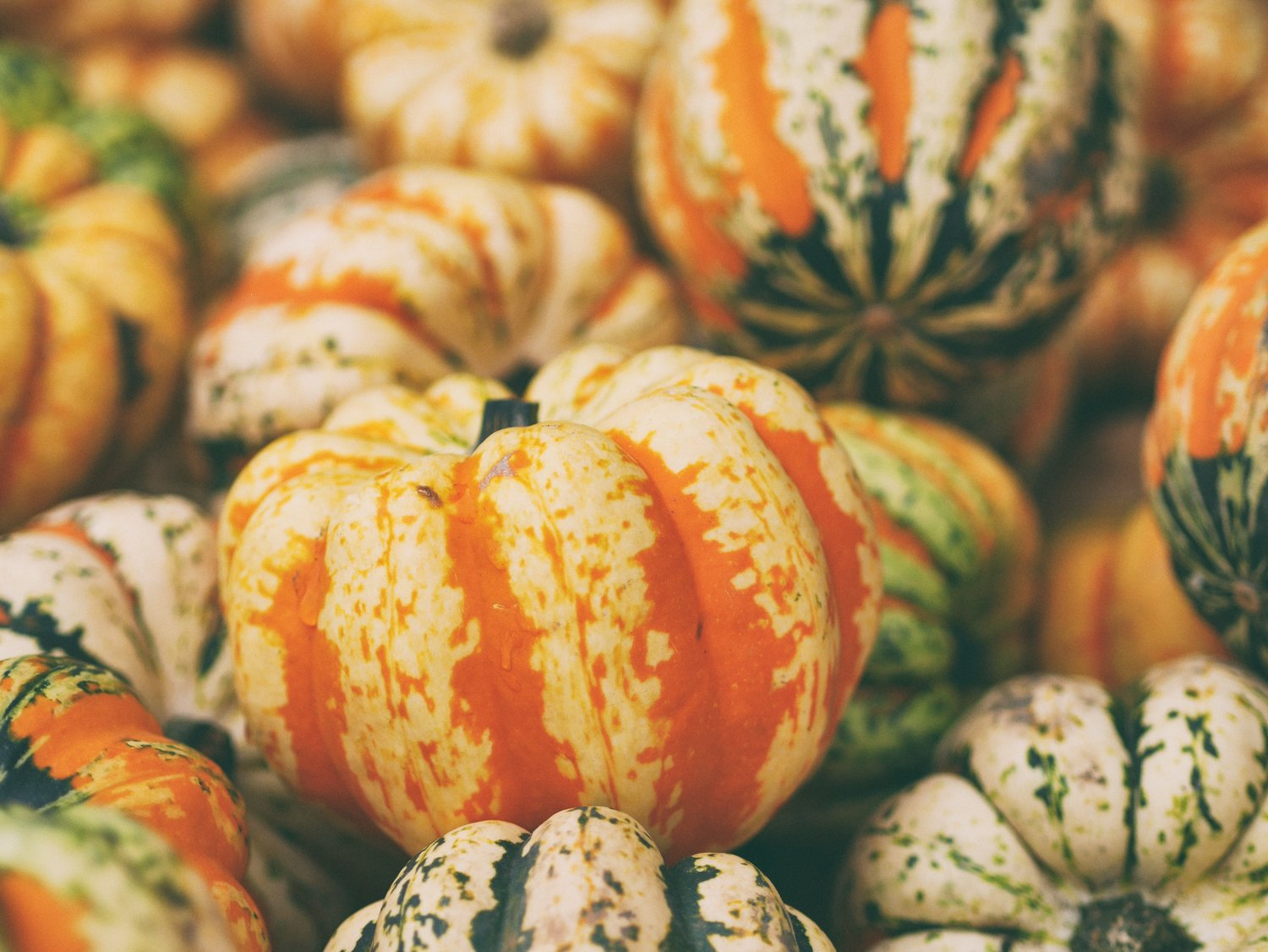 Sweet and Spicy Squash