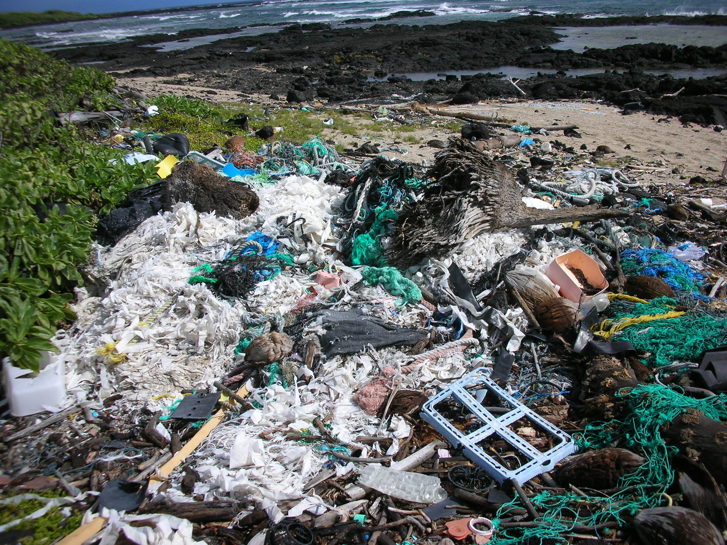 The severity of our plastic pollution problem exceeds what can be managed through recycling, so organizations are working to get out the word on how else to deal with it. Photo from  5 Gyres