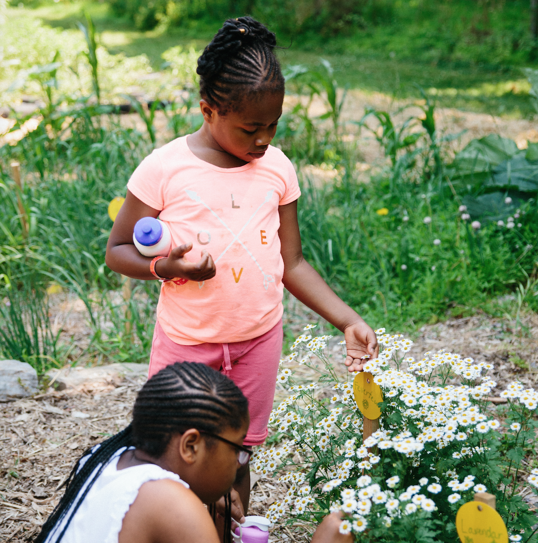 """The garden is filled with flowers, vegetables, and herbs. After setting aside their original skepticism about whether it's safe to eat things picked out of the ground, the campers taste a basil leaf and a mint sprig. After the first nibble, the problem is no longer convincing them to eat the leaves but instead making sure they don't eat everything as they learn about plants like lavender and feverfew. """"My favorites are the plants you get to taste,"""" says eight-year-old Adreanna. """"It's crazy that you can just eat things right out of the ground.I knew that's how food grows, but I never really thought about it before."""" Photo credit: Alden Terry"""