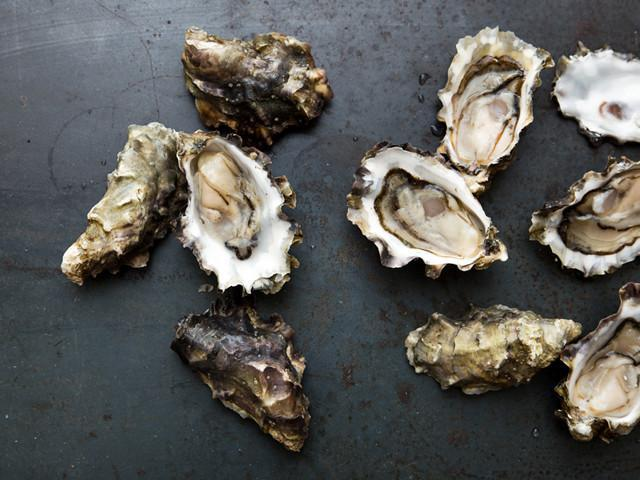 Oysters get high marks in Paul Greenberg's book,  The Omega Principle,  in which he makes a case for giving up omega-3 supplements and eating small, omega-rich fish and bivalves instead. Photo by  Hama Hama Oysters
