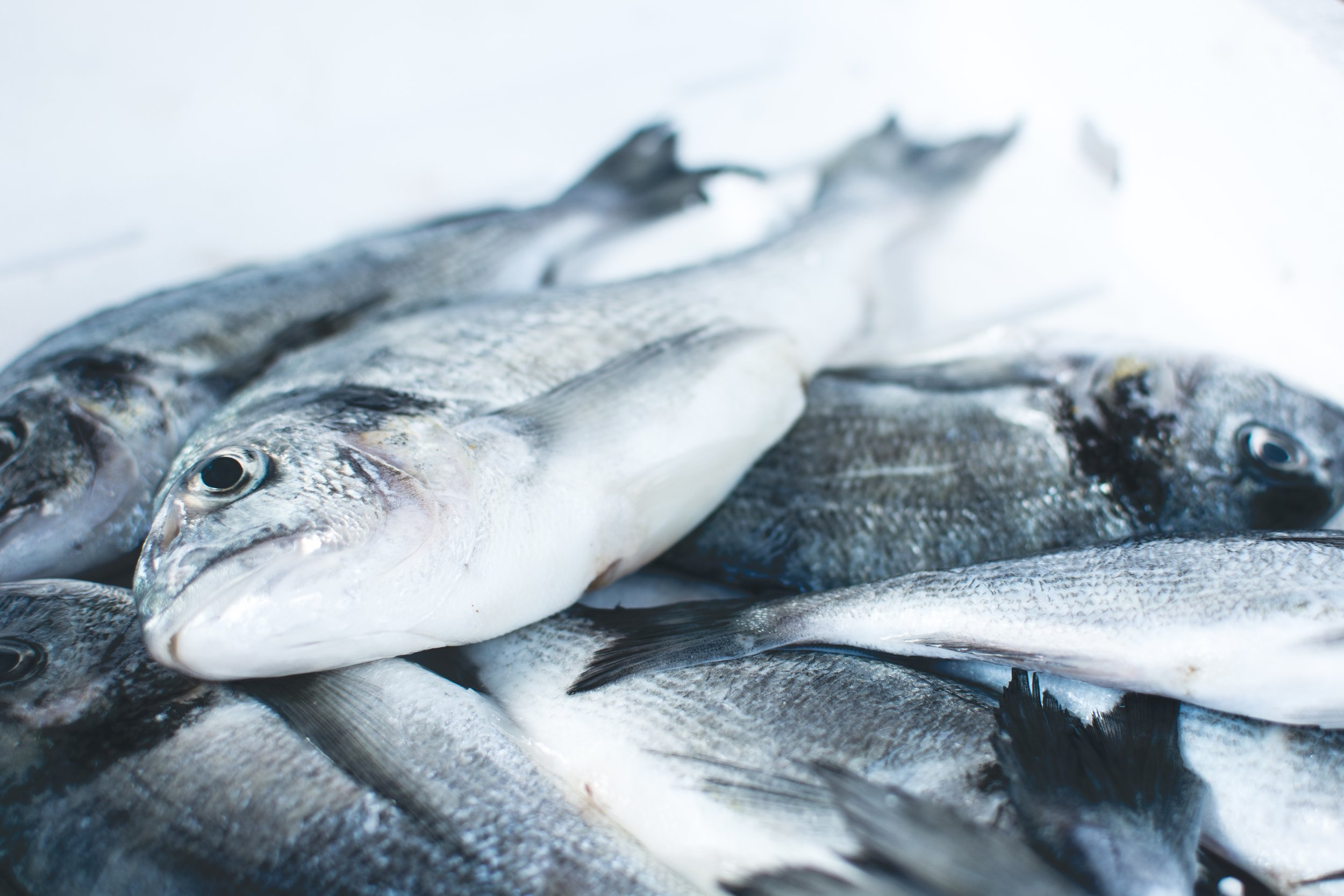Frozen fish are more likely to have peak freshness locked in, along with being more environmentally friendly.