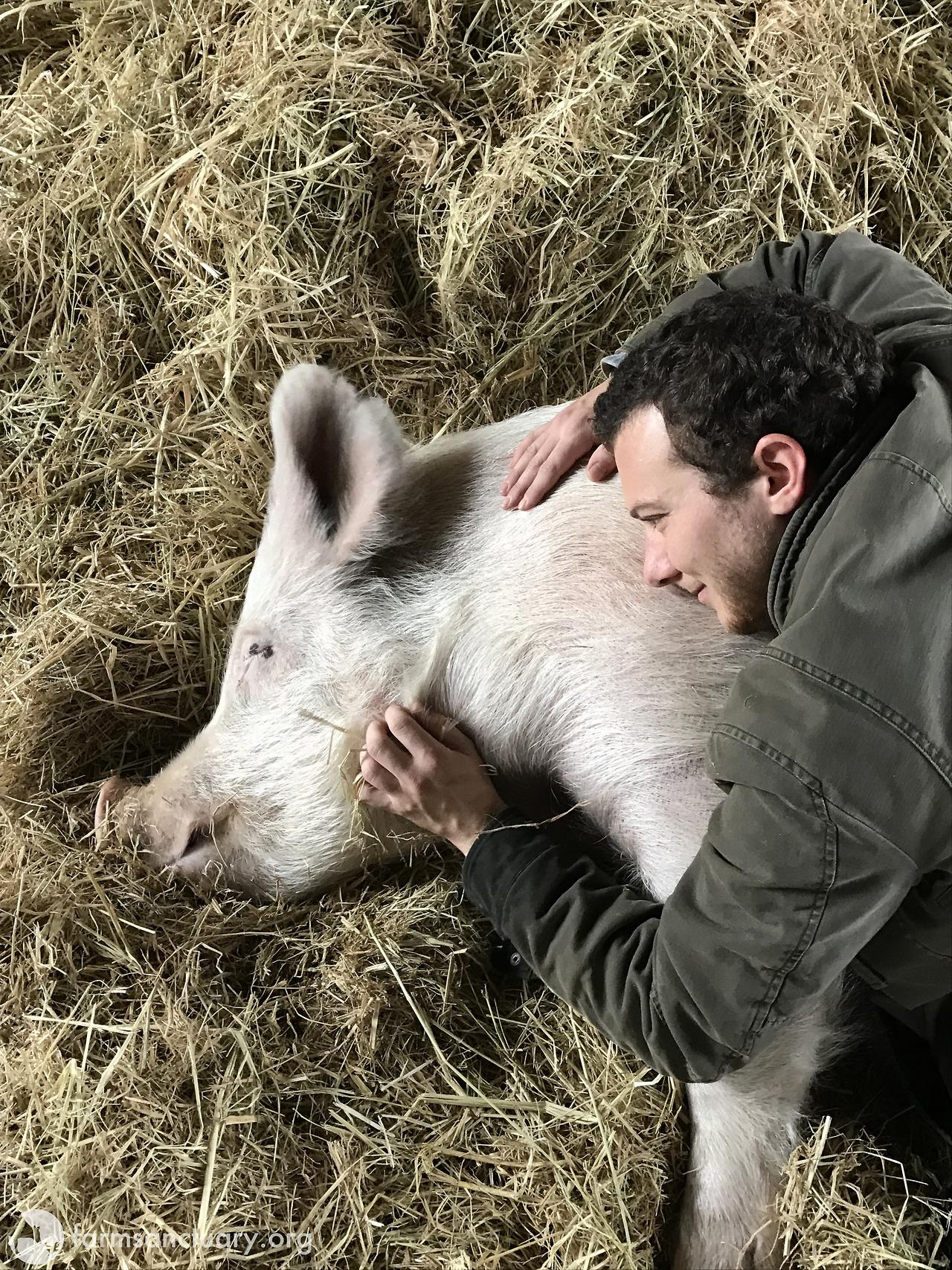 Pigs, like Bob Harper, tend to make good farm animal ambassadors because they're affectionate, sensitive, and smart.