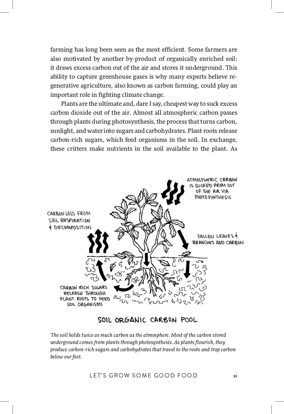 Growing Perennial Foods Preview 8.jpg