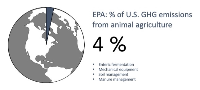 When calculating the GHG emissions of animal agriculture, the EPA accounts for mechanical equipment, soil management, enteric fermentation, and manure management, but it does not include emissions from land-use conversion or the transportation, processing, packaging, and sale of agricultural products. The EPA has estimated that animal agriculture contributes 4% of U.S. GHG emissions.