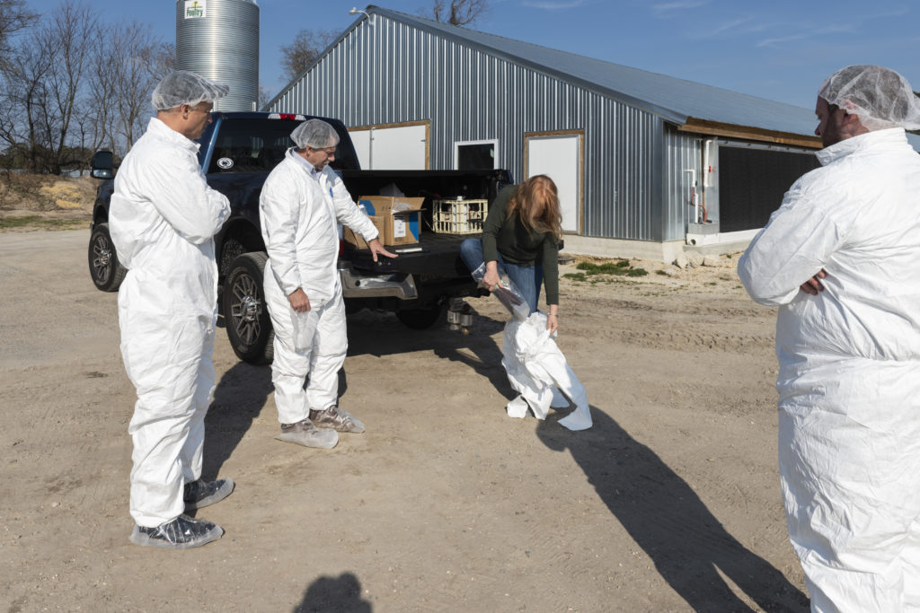(Left to right) Dr. Bruce Stewart-Brown and Mike Levengood watch as reporter Marilyn Noble puts on a Tyvek suit and booties before entering the one of the chicken barns at Laura Hill's Delaware farm. Joey Shevlin from Perdue looks on.