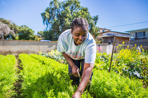The number of women working as principal food growers has exploded recently. Photo source:  Female Farmer Project