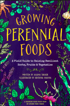 This recipe is excerpted from  Growing Perennial Foods: A field guide to raising resilient herbs, fruits & vegetables , by Acadia Tucker. It includes tips on gardening in a way that mitigates climate change, 34 perennial profiles, and a recipe for each one.