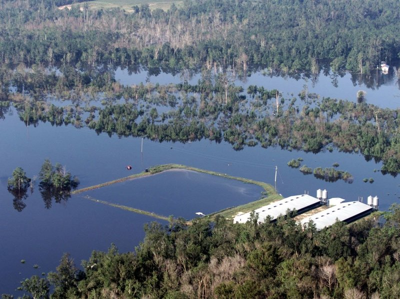 A flooded manure lagoon from a hog farm in North Carolina suggests one reason agriculture is a leading cause of pollution in this country. Nonetheless, the federal government does not reliably track factory farms. A new mapping technology makes it easier to locate factory farms, and establish accountability  Photo source