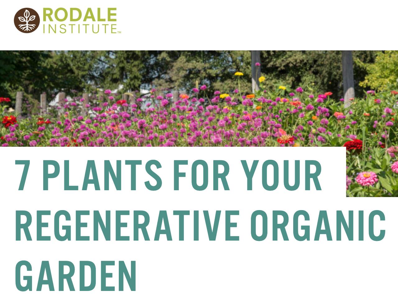 7 plants for your regenerative organic garden ,  Rodale Institute