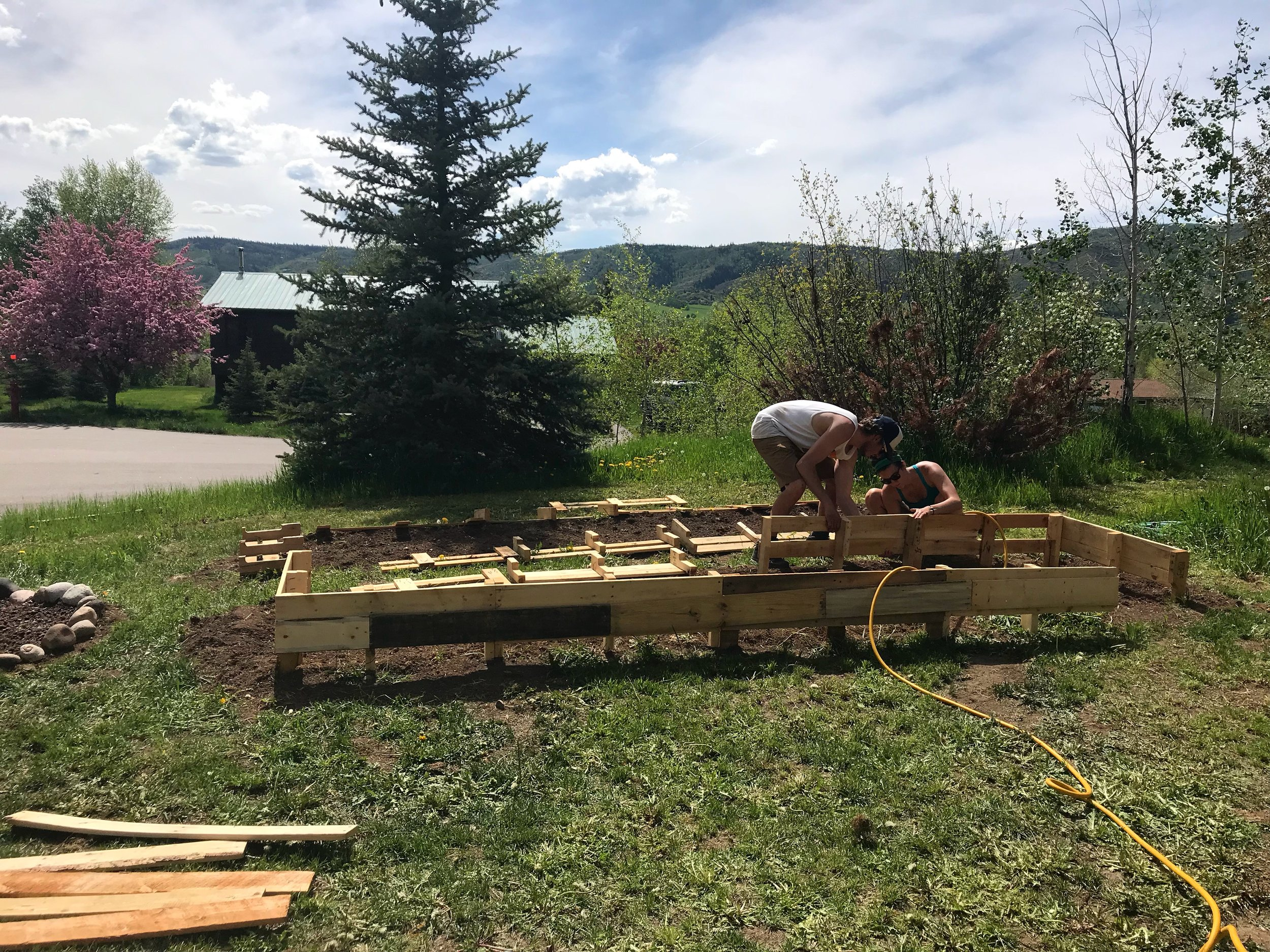 My garden beds are built from wooden pallets my brother and I found around town.