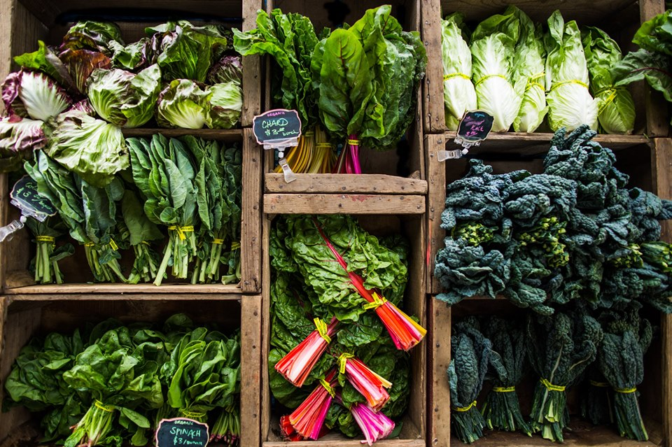 Leafy greens aren't just for salads anymore.  Image source