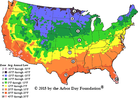 Hardiness Zones divide the United States and Canada into 11 zones based on average annual minimum temperature. Though local variations like moisture and wind can effect the growth of certain plants, knowing your hardiness zone will help you select a tree that's viable in your zone's temperature extremes (image via  Arbor Day )
