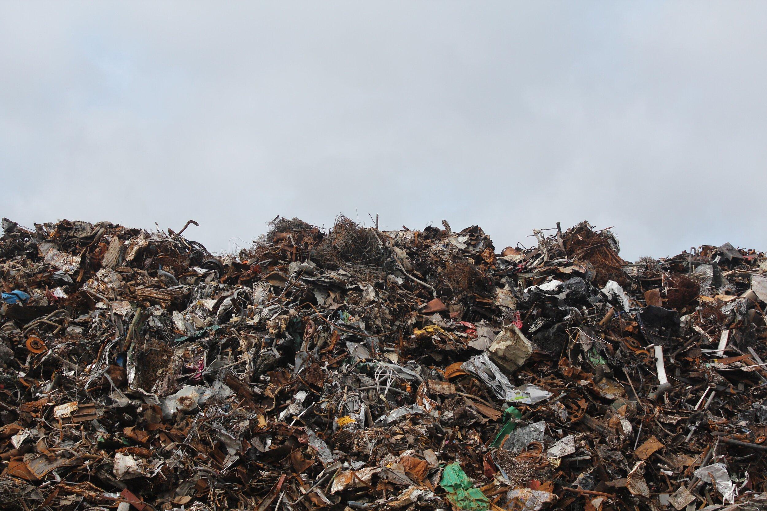 Limit food waste -