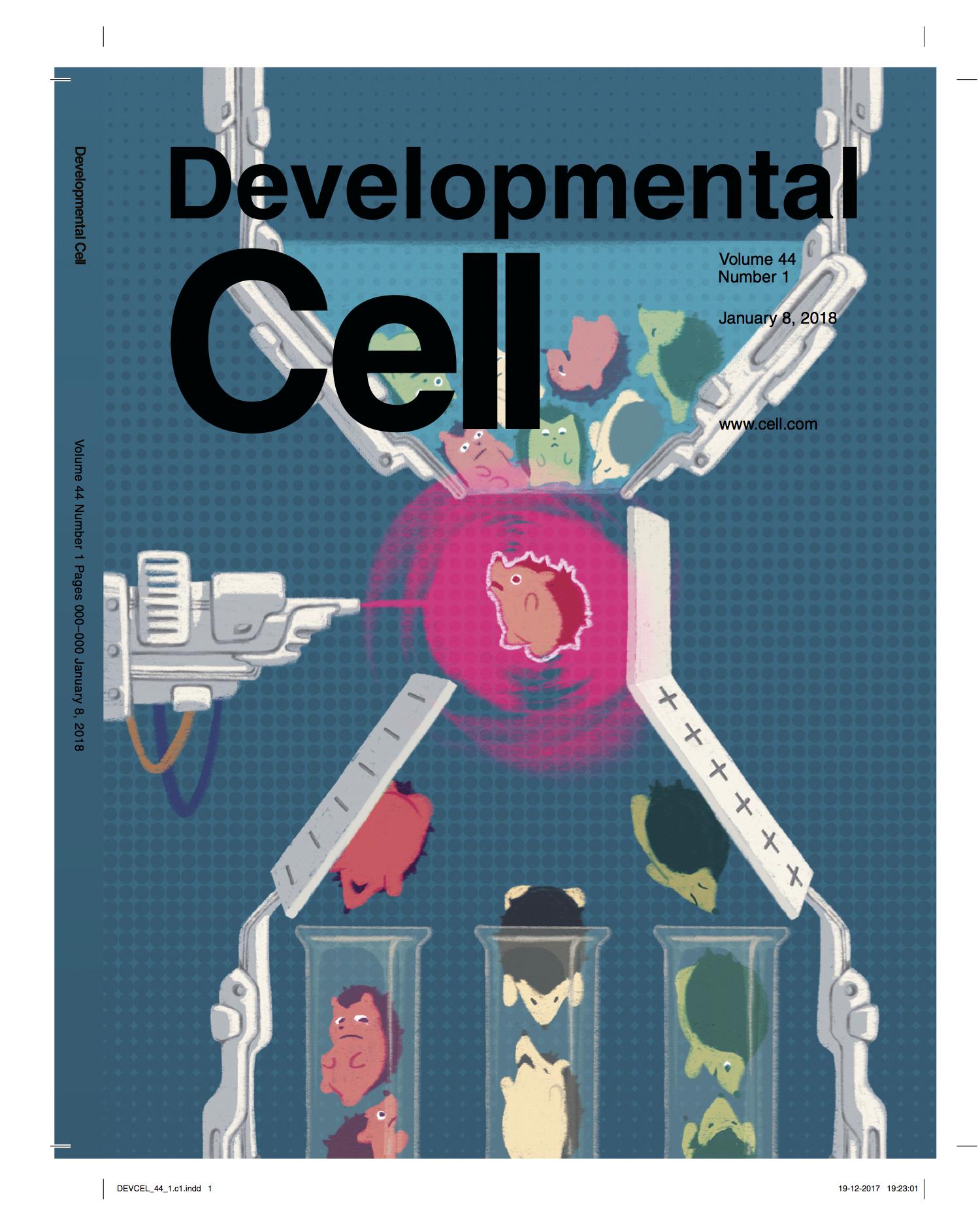 DevCell_cover.jpg