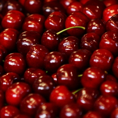 Organic sweetheart cherries from the Okanagan Valley, British Columbia