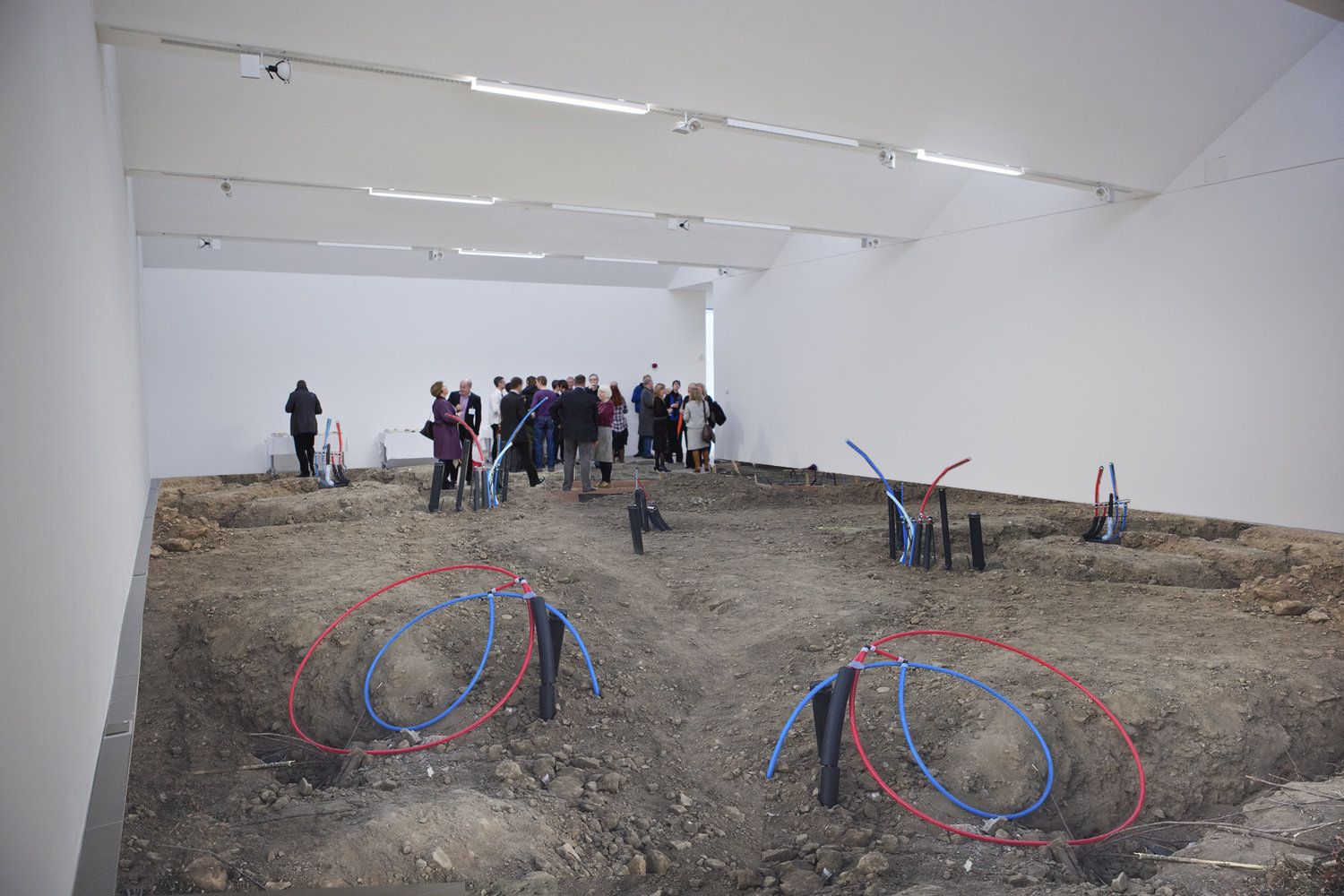 Fawn_Rogers_Exhibition_Installation_Moah.jpg