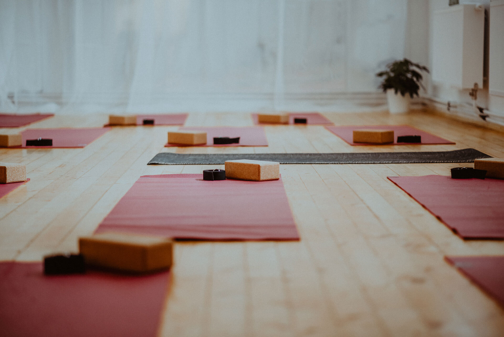 Prague_Yoga_Studio_Mats_and_Blocks_and_Straps.jpg