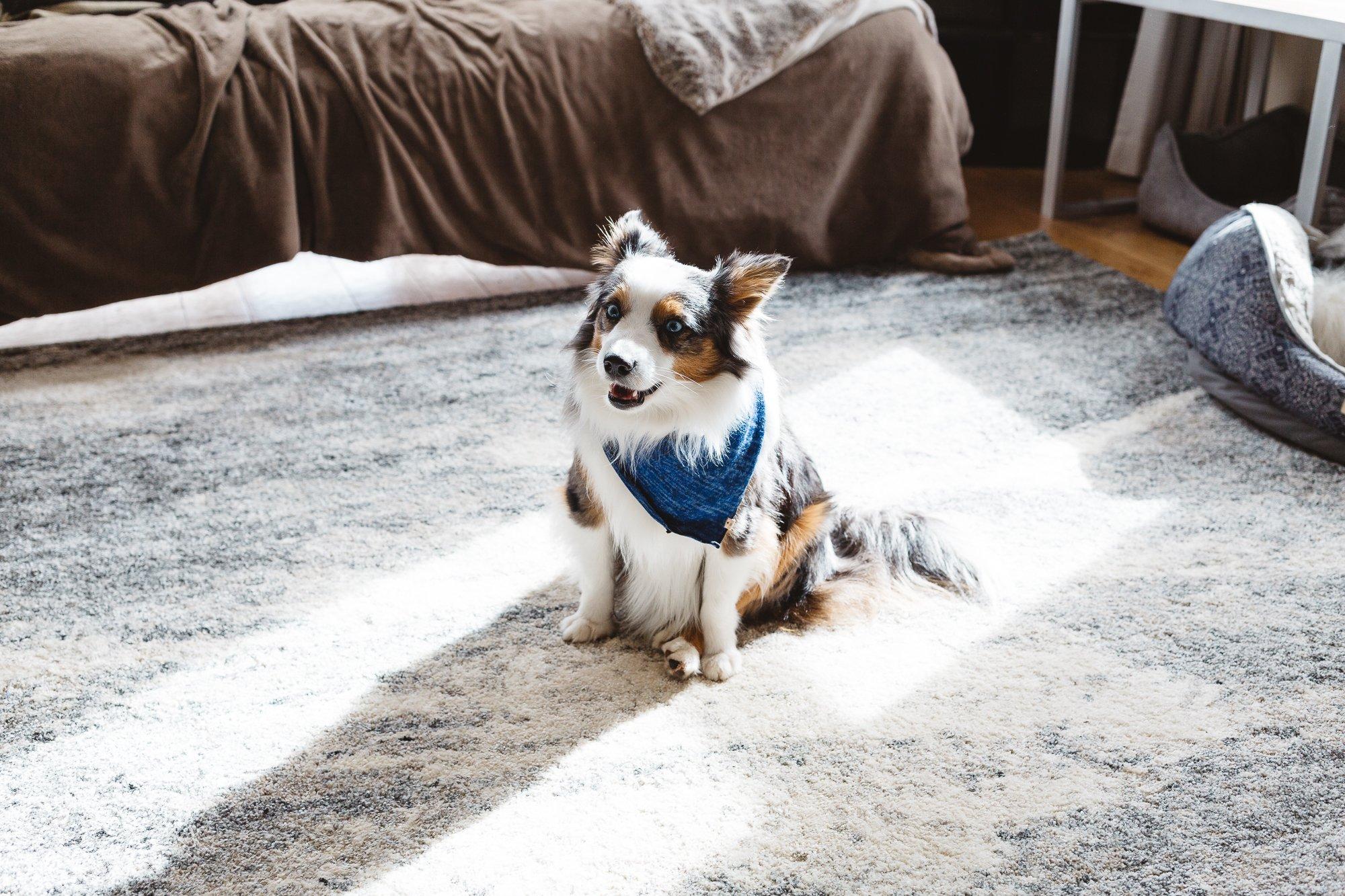 Oh_Tiny_Heart_Geronimo_mo-421.jpg