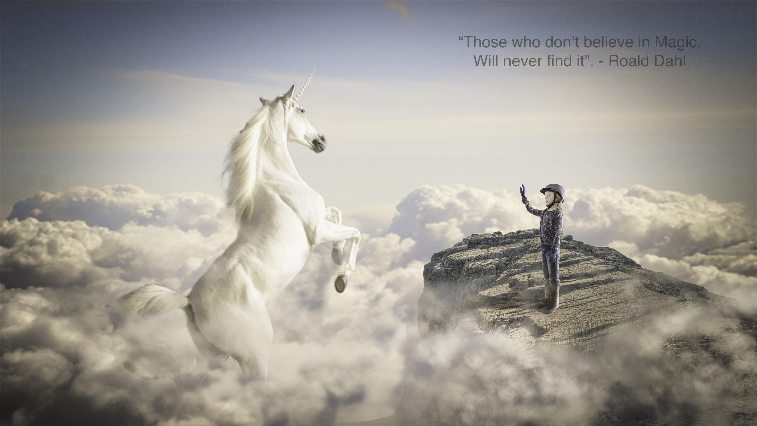 Ruleen's Unicorn.jpg