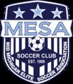 Mid-Michigan Elite Soccer Association.png
