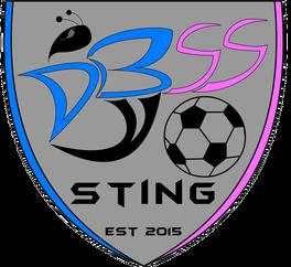 DBSS Sting Soccer Club