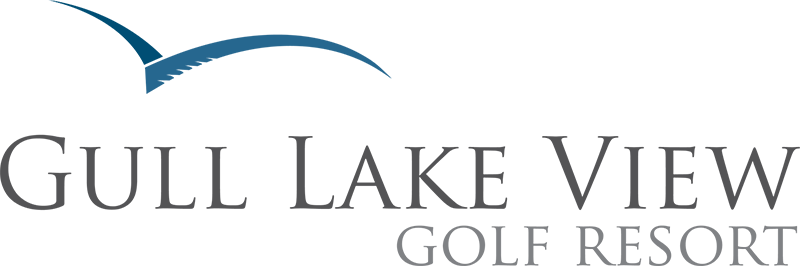 Gull Lakeview Logo.png