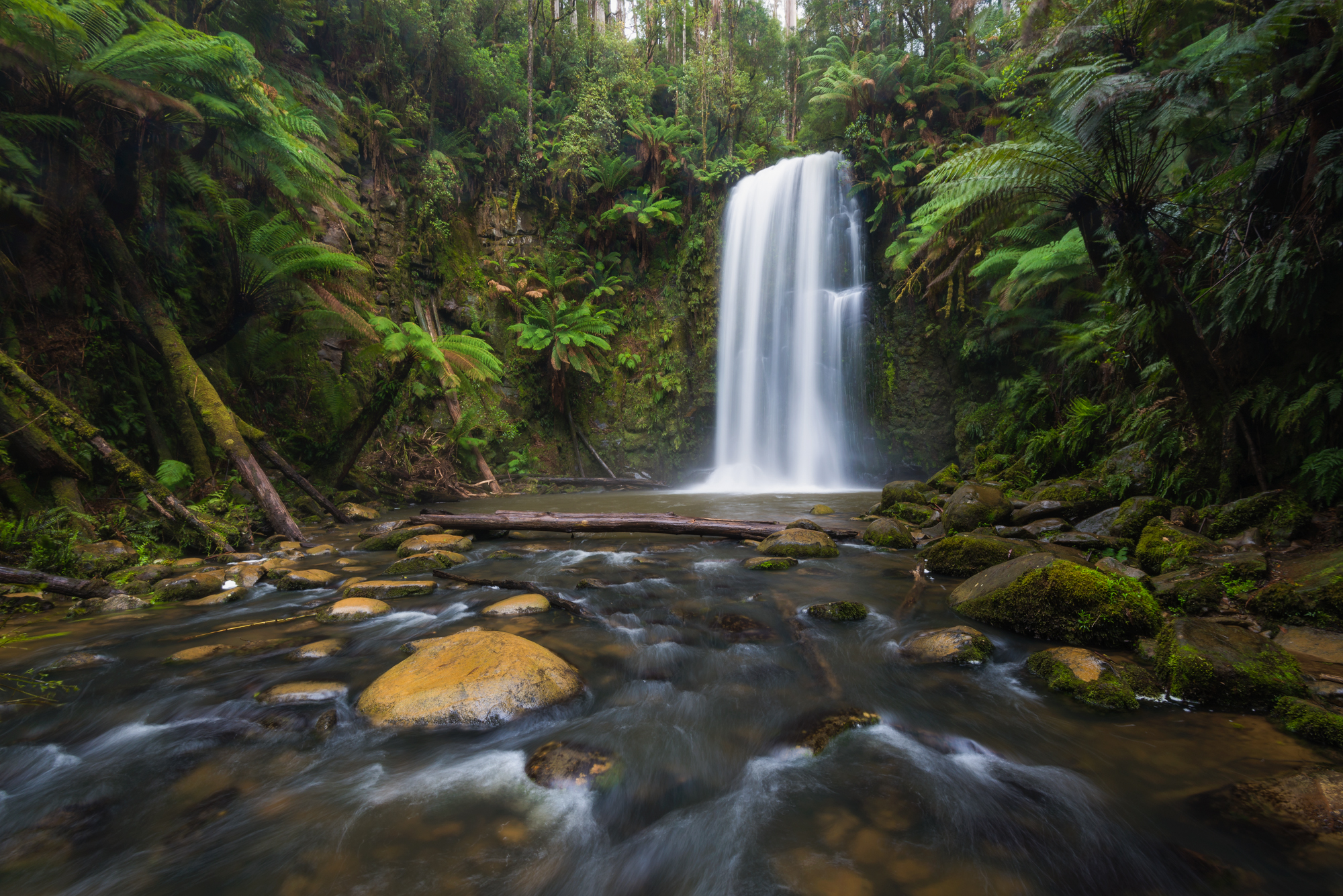 Just off the main track: Beauchamp Falls - Nikon D800 @ ISO 100 | f/16 | 16mm | 1/8 sec