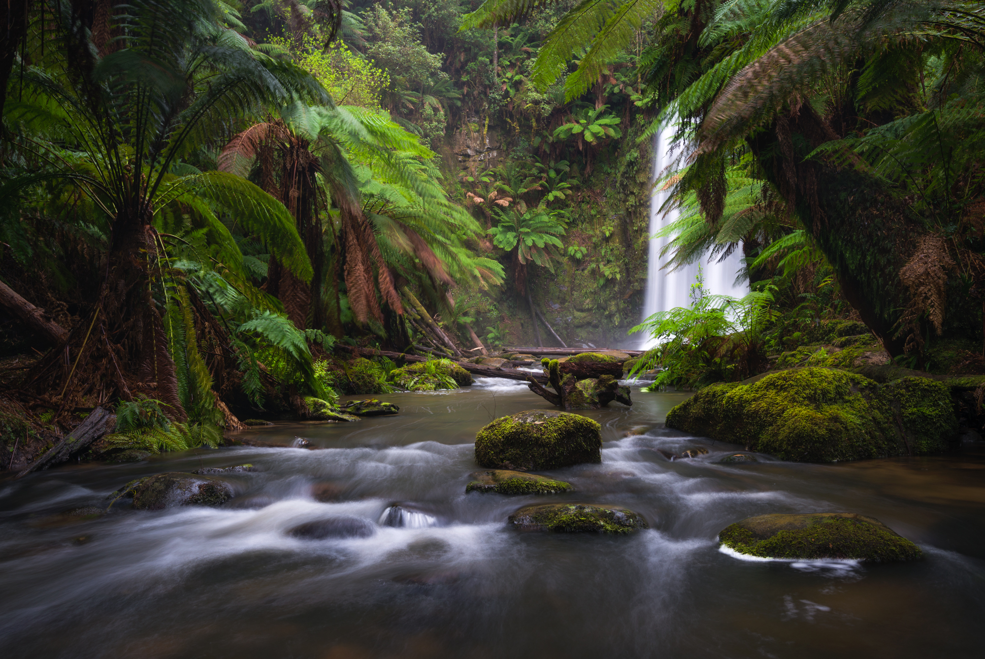 Beauchamp Falls - Nikon D800 @ ISO 100 | f/8 | 30mm | 1/4 sec