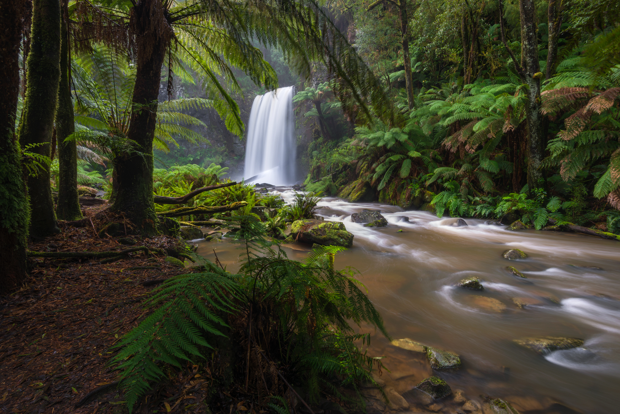 Below Main Lookout: Hopetoun Falls - Nikon D800 @ ISO 100 | f/16 | 16mm | 3 sec