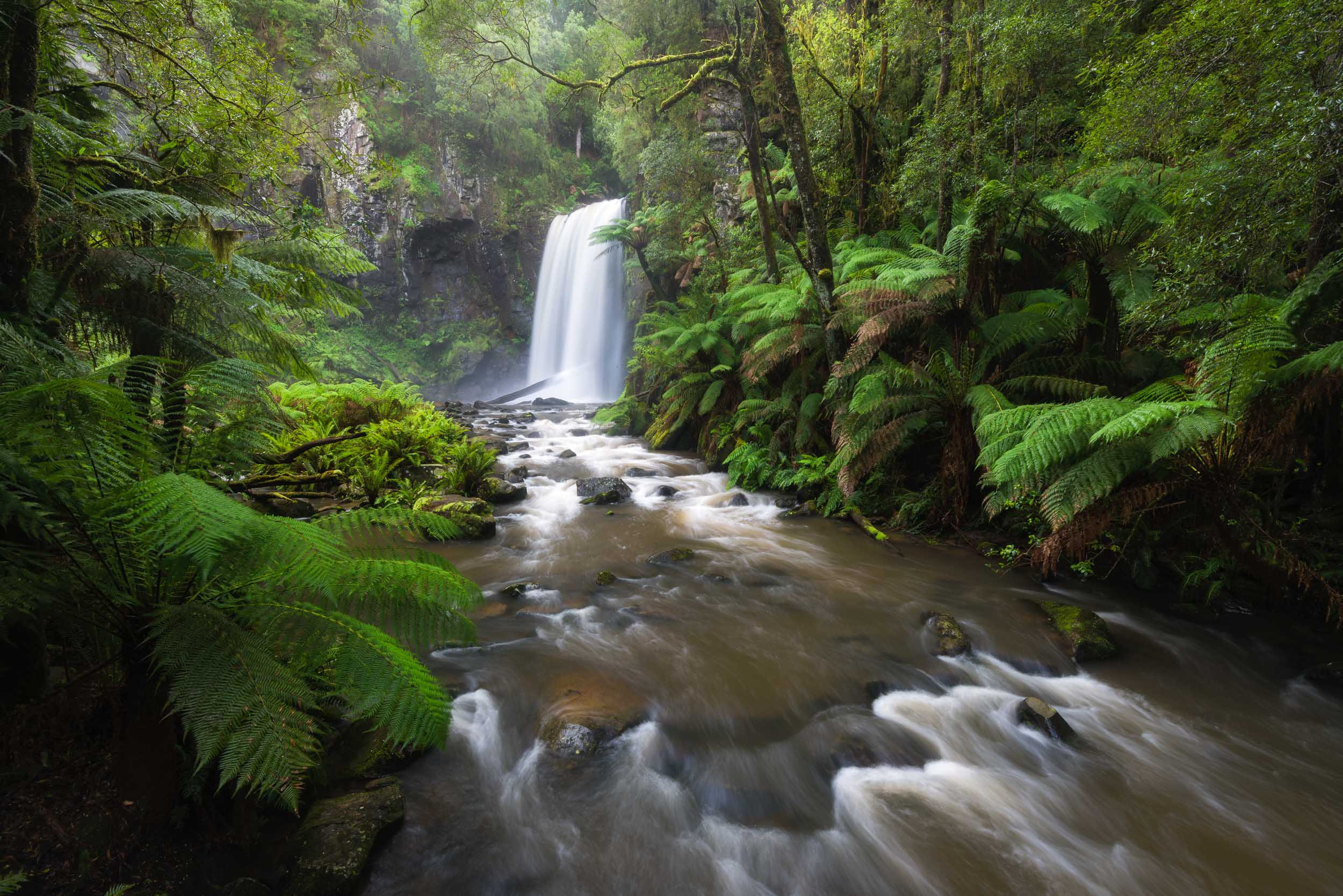 Waiting for Silence - Hopetoun Falls, Great Otway National Park - Victoria