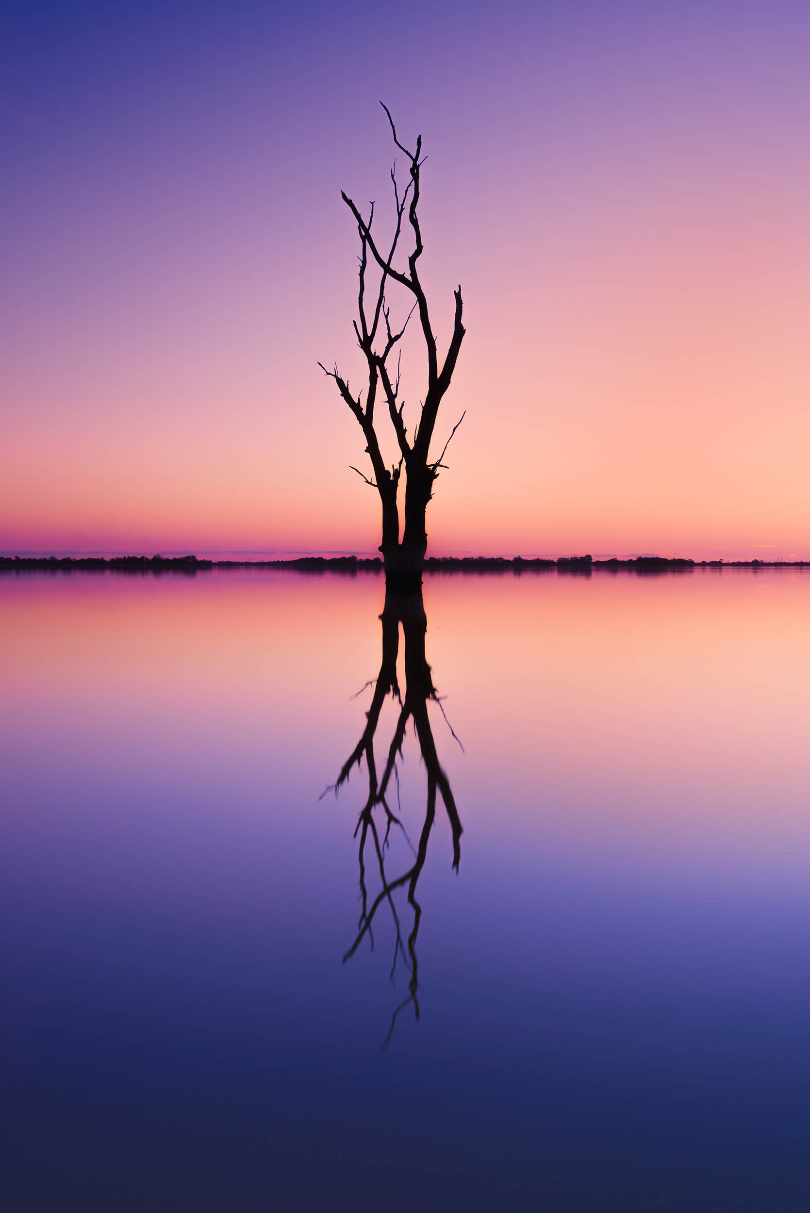 Infinity Pool - Lake Bonney, Riverlands - South Australia