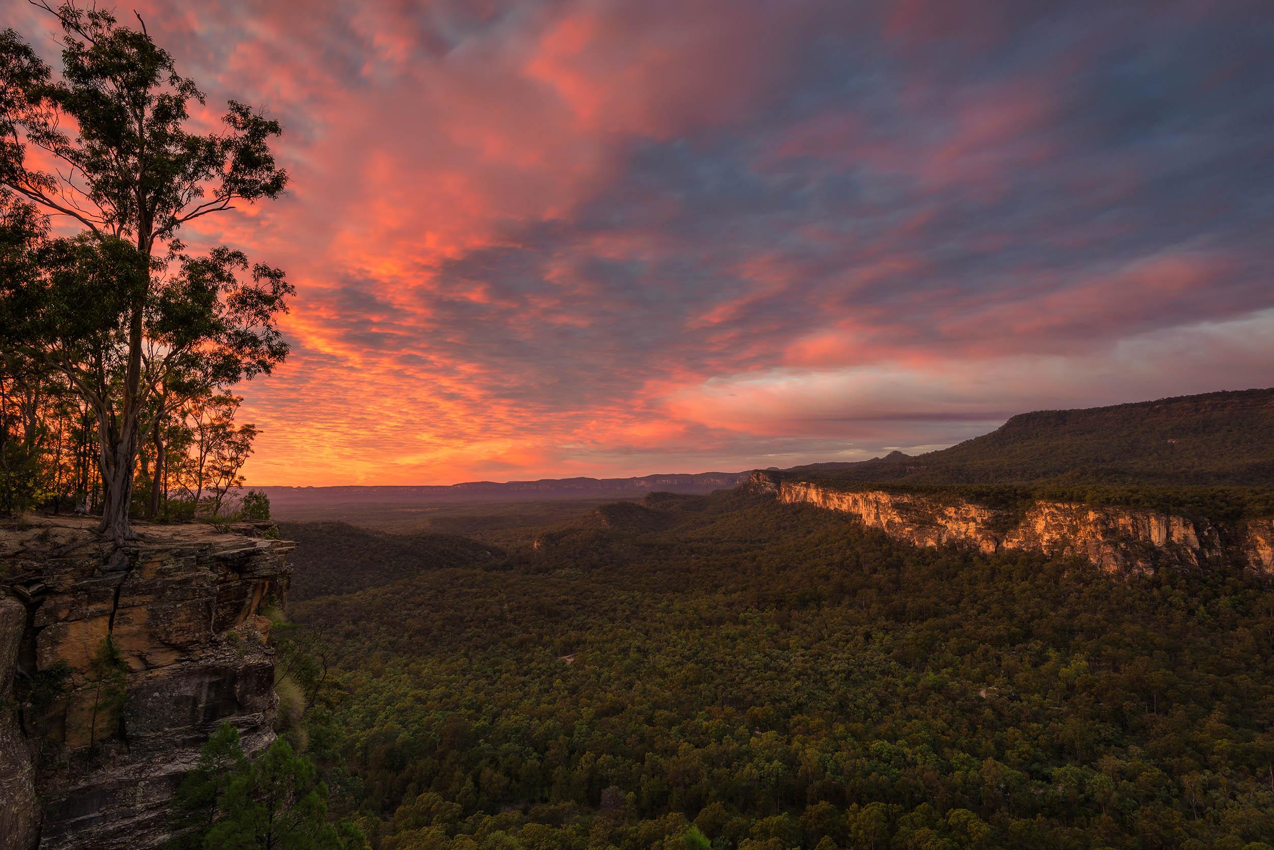 Boolimba Bluff @ Sunrise, Carnarvon Gorge