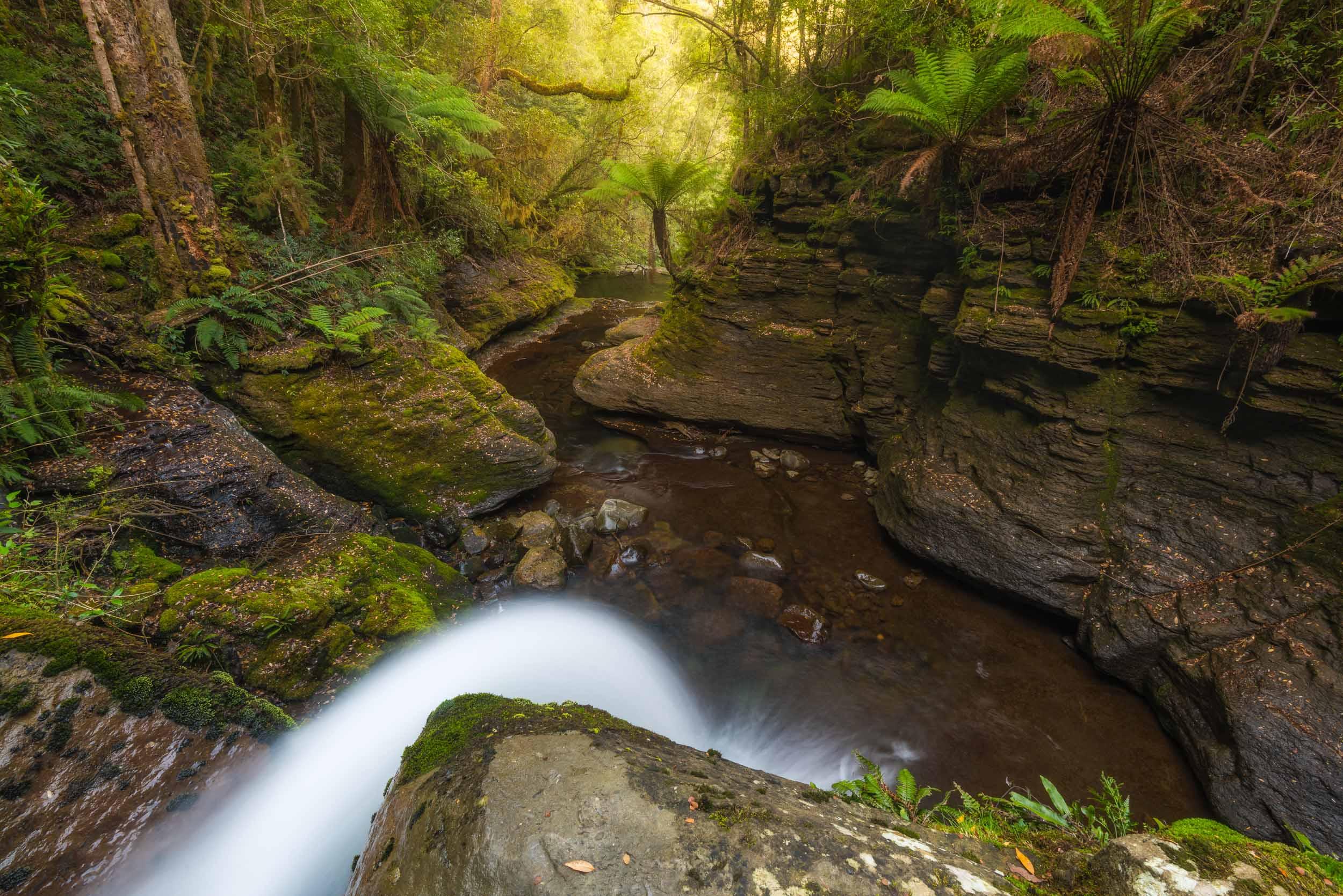 Soul Awakening - Liffey Falls - Tasmania