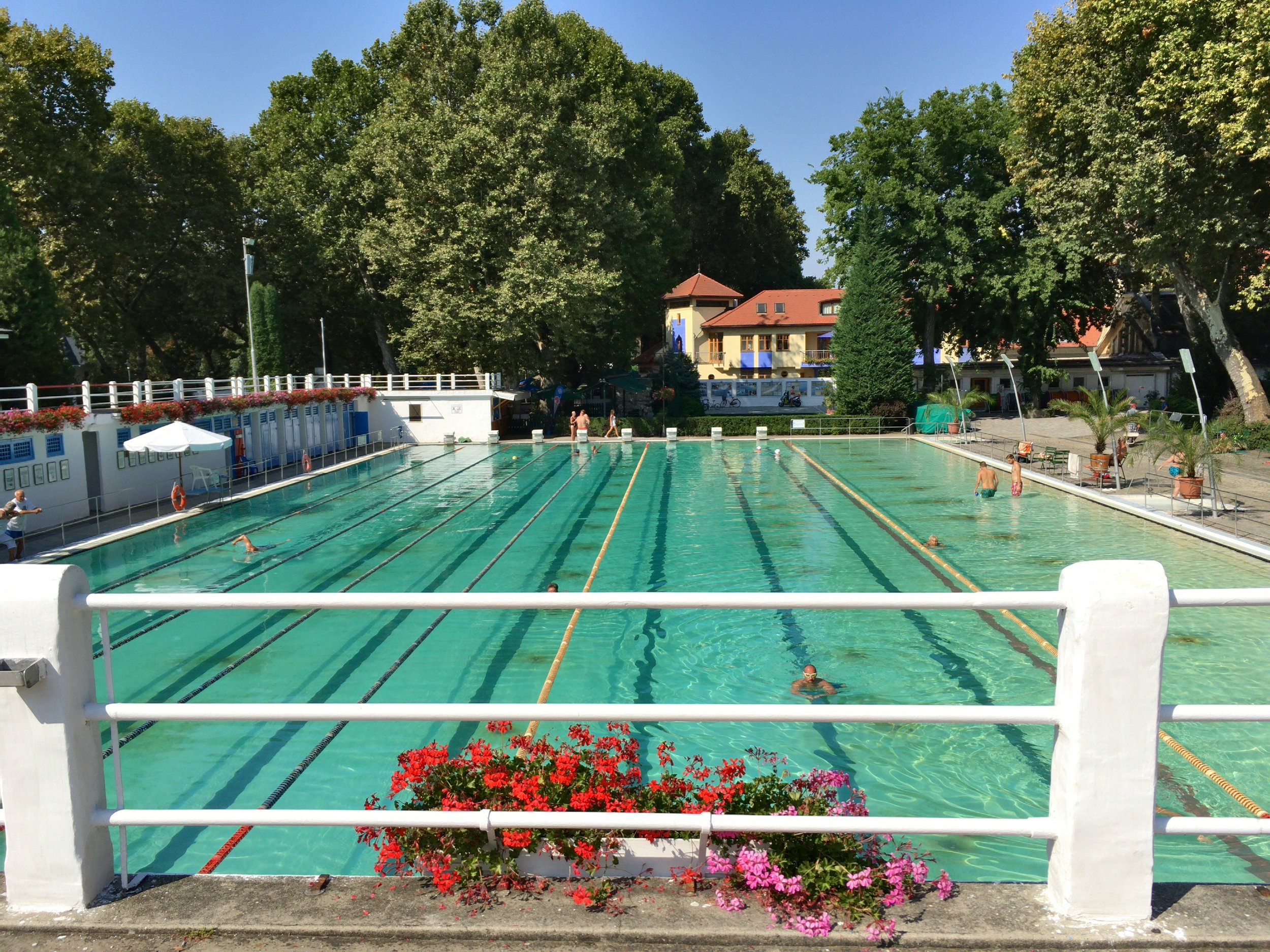 Another fabulous place to be entertained is at a public pool. This however, is no oridnary complex, it's a beautifully maintained historic pool in Esztergom, Hungary, where can you still get to witness classic high-cut white Speedos on old men.