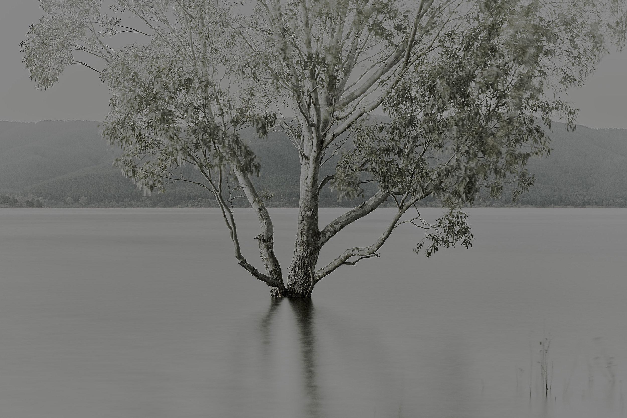 Patrick_Schuttler_Landscape_033.jpg
