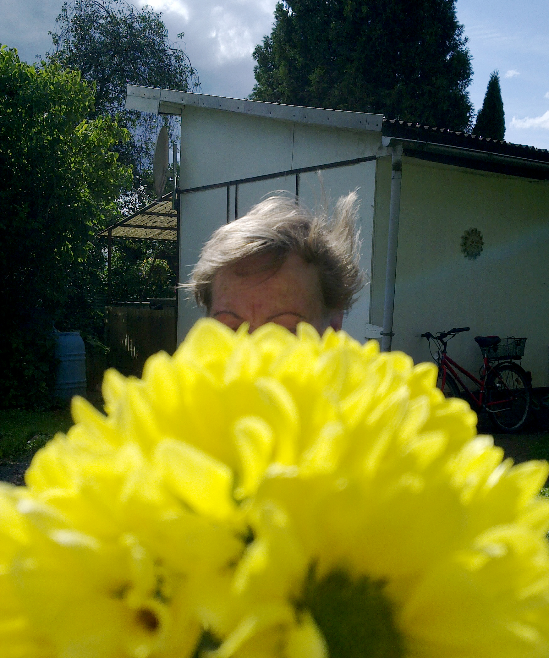 Mutti_Sonnenblume.jpg