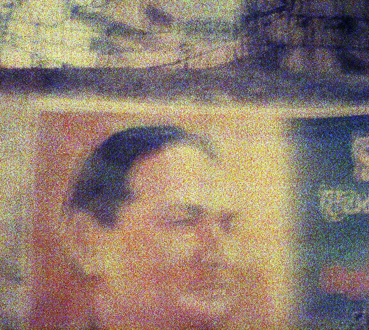 Lomo_Face.jpg