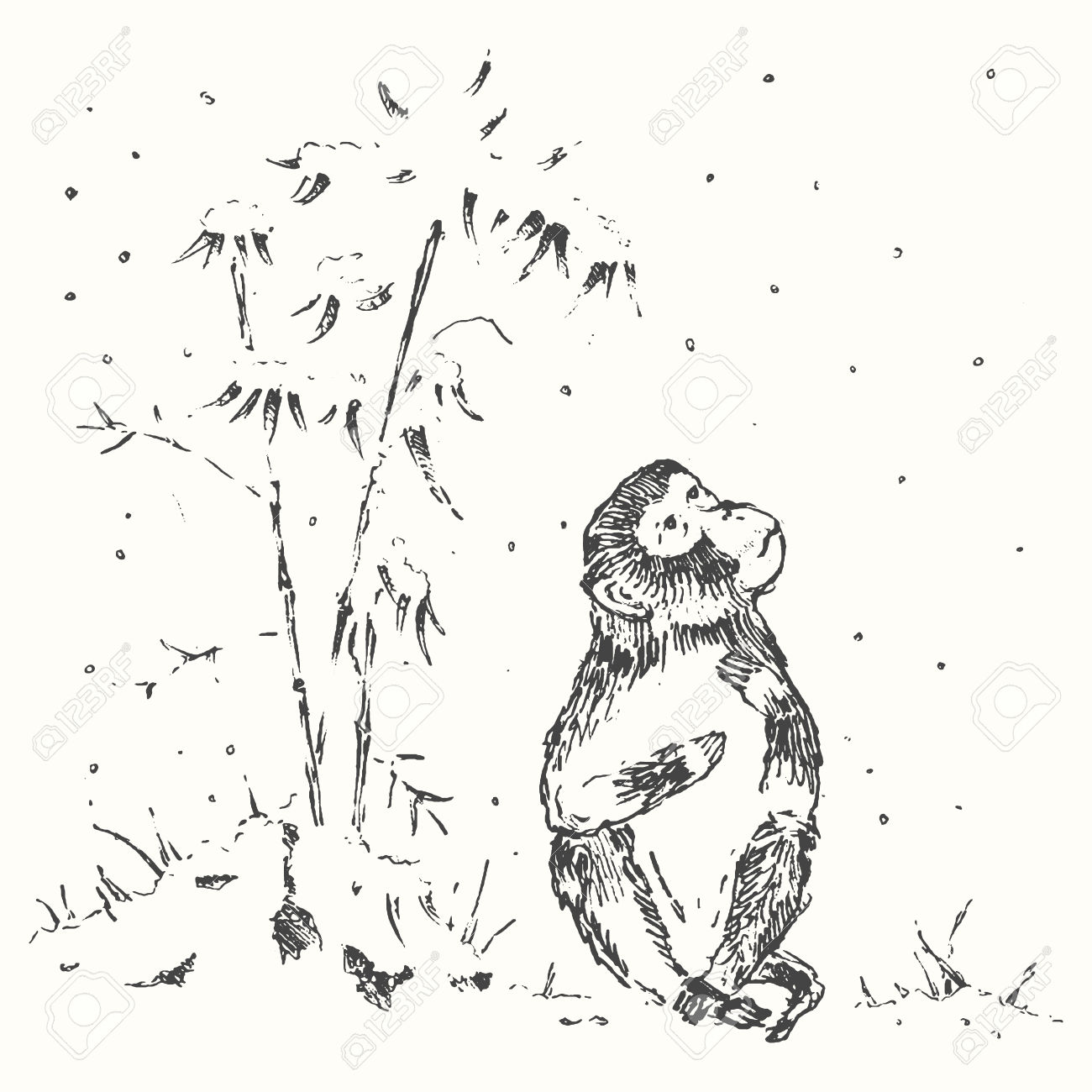 47840317-Traditional-Chinese-illustration-of-monkey-with-bamboo-and-snow-monkey-year-greeting-card-Chinese-zo-Stock-Vector.jpg