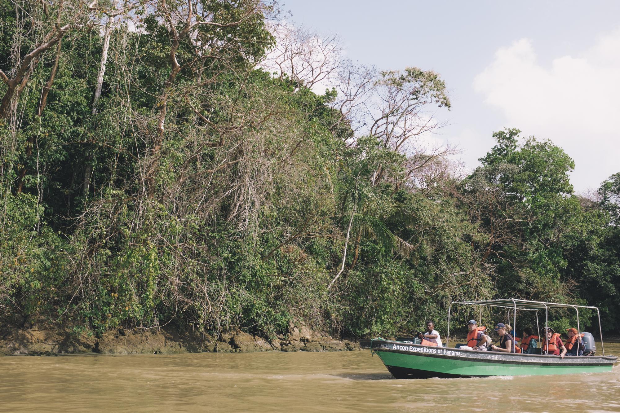 Panama - Wild Life-6.jpg