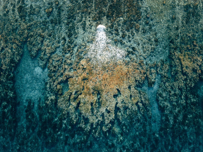 drone-fotografie-drone-piloot-roc-light-certificaat-professioneel-1.jpg